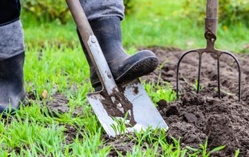 Newry And Mourne garden maintenance companies