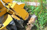Newry And Mourne tree stump grinding services